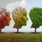Alzheimers stem cell treatment