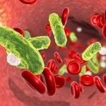 Stem cells treat sepsis