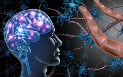 Stem Cell Therapy For Autism