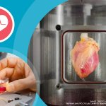 Heart disease and stem cells