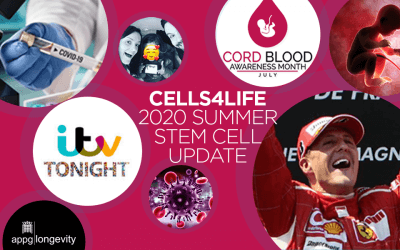 Summer 2020: the latest stem cell news